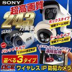 工事費込みパック♪ 243万画素!選べる3タイプ ワイヤレス IPカメラ