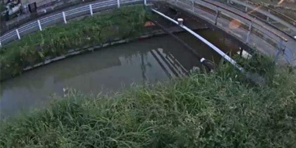 川の状況を遠隔から監視・確認する防災カメラとして